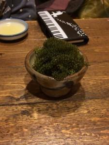 moiwa-taiyo10