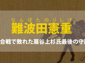 難波田憲重の生涯