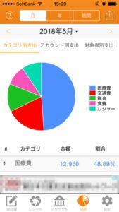 毎日家計簿のグラフ